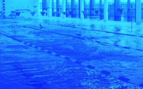 IMG_2029_blue